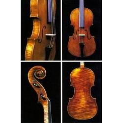 JAY HAIDE BAROQUE ANTIQUE LUTHIER